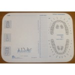 "Tray cover, size (B) tray - 8-1/2"" x 12-1/4"