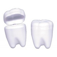 1.25 Inch White Tooth Holder - 72/pieces